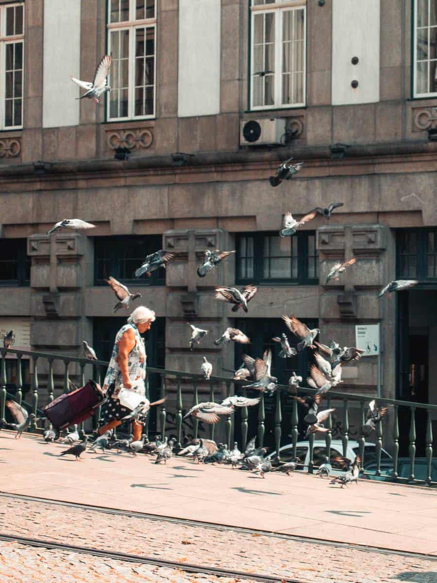 ΣΕΜΙΝΑΡΙΟ ΦΩΤΟΓΡΑΦΙΑΣ - ΠΡΟΓΡΑΜΜΑΤΑ ΦΩΤΟΓΡΑΦΙΚΗΣ ΜΗΧΑΝΗΣ: Ο ΑΠΟΛΥΤΟΣ ΟΔΗΓΟΣ